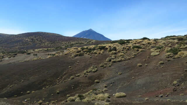wandern_teide-nationalpark_teneriffa_11
