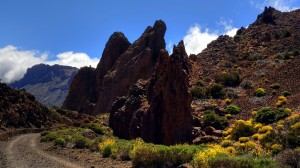 teide-nationalpark-17
