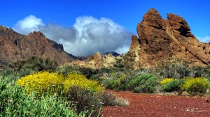 teide-nationalpark-2