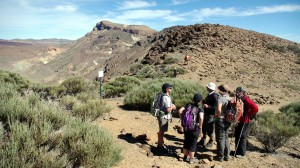 teide-nationalpark-8
